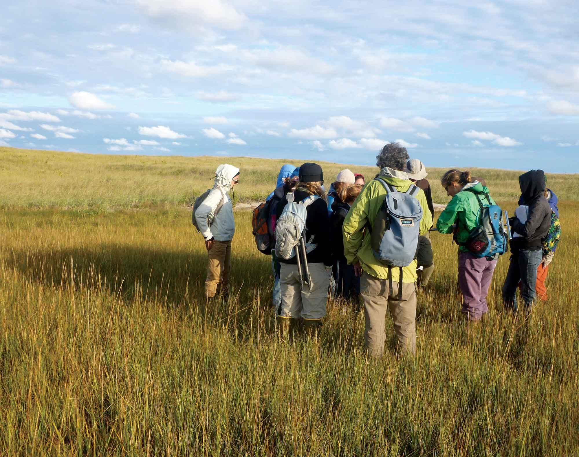 Group of Environmental studies students in open field