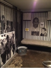 Civil rights activism display